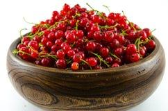 Ribes rosso Fotografie Stock Libere da Diritti