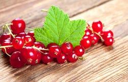 Ribes rosso con la foglia su vecchio legno Immagine Stock