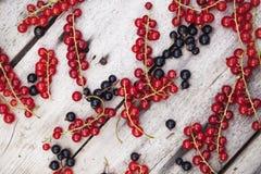 Ribes rosso e nero sulla tavola di legno Fotografia Stock Libera da Diritti