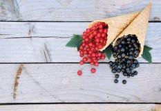 Ribes rosso e ribes nero freschi maturi nei coni della cialda del gelato su fondo di legno rustico Immagine Stock