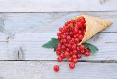 Ribes rosso fresco maturo nel cono della cialda del gelato su fondo di legno rustico Immagine Stock