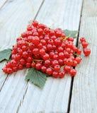 Ribes rosso fresco su fondo di legno rustico Fotografia Stock