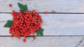 Ribes rosso su fondo di legno rustico con spazio per testo Fotografia Stock