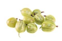 Ribes uva-crispa odizolowywający Fotografia Stock