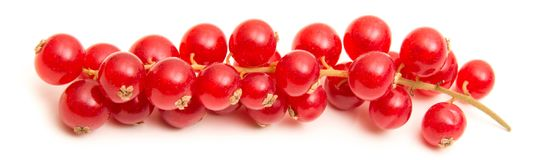 Ribes on white background. Fresh ribes on white background Royalty Free Stock Photos