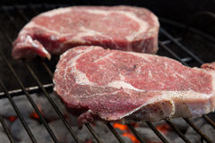 Ribeye Steaks on Grill. Raw rib eye steaks on a grill with hot coals Royalty Free Stock Photo