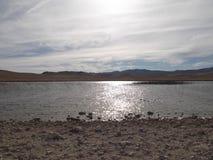 Riblje湖 免版税库存图片