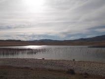 Riblje湖 库存图片