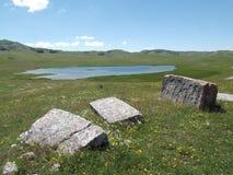 Riblje jezero zdjęcie royalty free