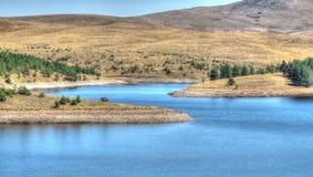 Ribnica sjö Serbien royaltyfria bilder