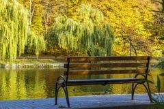 ribnjak för bänkcroatia park Royaltyfri Fotografi