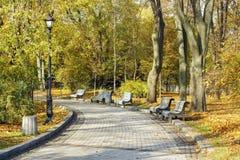 ribnjak för bänkcroatia park Arkivbild
