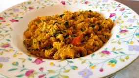 Ribollita或Minestra di Pane是著名托斯坎面包汤 carpaccio烹调非常好的食物意大利生活方式豪华 库存图片