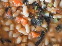 Ribollita Tuscan soup Royalty Free Stock Photo
