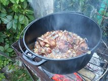 Ribs  in a cauldron on a fire. Ribs in a cauldron on a fire Stock Photography