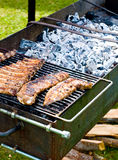 Ribs on the grill Stock Photos