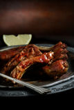 Ribs II Stock Image