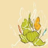 Ribwort Blumenhintergrund vektor abbildung