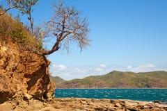 rica ландшафта Косты стоковое фото rf