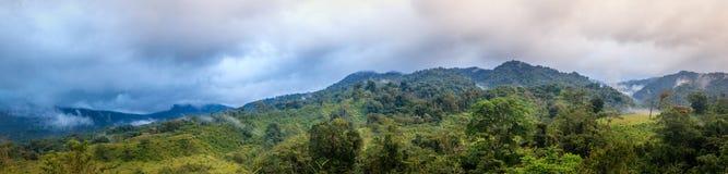 rica de forêt de côte de nuage photos stock