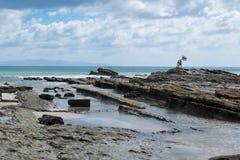 Rican surfare för Costa med flaggan på kusten Fotografering för Bildbyråer