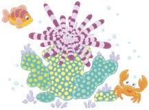 Riccio di mare, pesce e granchio Immagini Stock