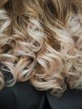 Riccioli di capelli leggeri con una pendenza di colore immagini stock