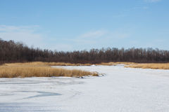 Rice湖全国野生生物保护区在冬天 库存照片