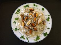 Rice. Plate of rice and seafood stock images