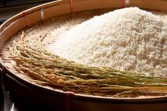 Rice. Raw rice on threshing basket Royalty Free Stock Images