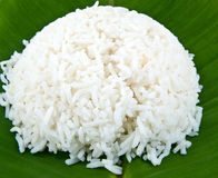 rice Royaltyfria Bilder