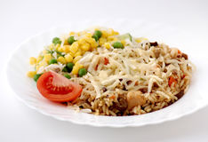 Rice. With meat and vegetable Stock Image