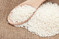 Free Rice Royalty Free Stock Photography - 23151697
