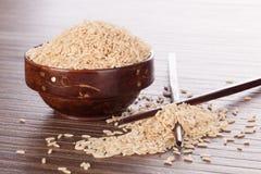 Rice. Royaltyfria Foton
