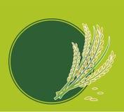 Rice royaltyfri illustrationer