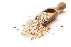 Rice. Raw organic brown rice in wooden scoop Stock Images