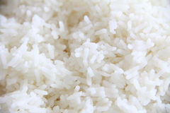 Rice obraz stock