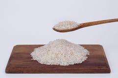 Rice Obrazy Royalty Free