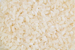Rice. Close-up of rice as background Royalty Free Stock Photos