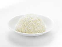 Rice Obraz Royalty Free