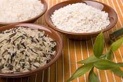 Rice. Various shape of rice white black and plant Stock Photo