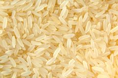 Rice Stock Photos