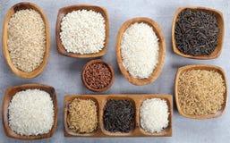 Rice adra Obrazy Stock