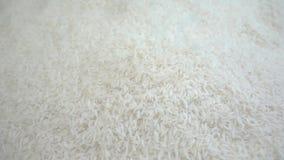 Rice adra spada w super zwolnionym tempie zbiory