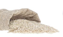 Rice background with grains and empty space Stock Images