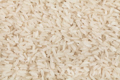Rice background texture Stock Photos