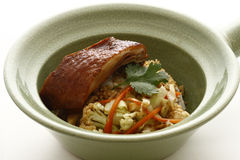 Rice with baked duck Stock Image