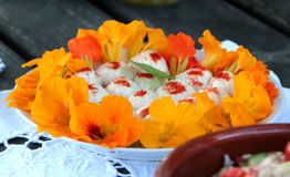 Food decorated with flowers Royalty Free Stock Image