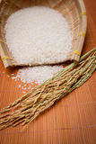 Rice on bamboo mat Royalty Free Stock Photography