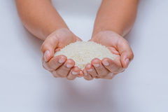 Rice. Basmati bowl scoop grain Stock Photography